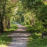 Rentnerweg