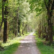Rentnerweg, Spazierengehen in Isen